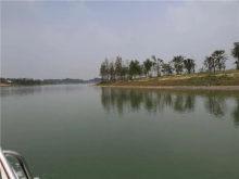 新乡平原湖二期蓄水完成 预计2020年年底开放