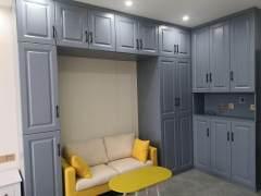 (红旗区)伟业中央公园1室1厅1卫40m²精装修