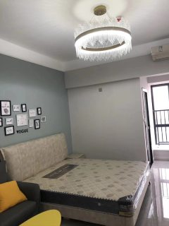 (红旗区)宝龙钻石公寓1室1厅1卫1100元/月45m²出租