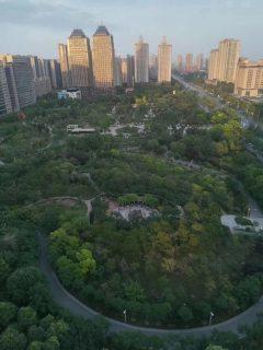(红旗区)伟业中央公园1室1厅1卫1800元/月42m²出租
