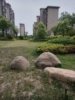 一线湖景 一楼带院洋房  纯洋房小区 公园医院学校政府三分钟直达