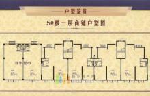 5#楼一层商铺户型