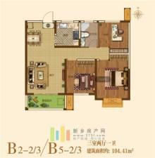 B2-2/3 / B5-2/3户型